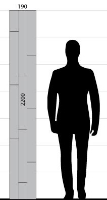 three strip flooring plank size illustration shadow man